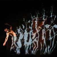 Arrenca el Festival IDN, Imatge, Dansa i Nous Mitjans
