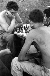 MAD (Mutual Assured Destruction) reviu a Temporada Alta l?enfrontament entre els escaquistes Fisher i Spassky