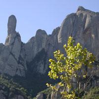 Descobriu el Parc Natural de Montserrat en deu rutes